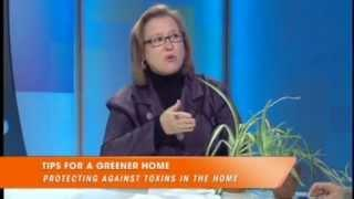 Ebru Today - Megan McWilliams - Tips for a Greener Home