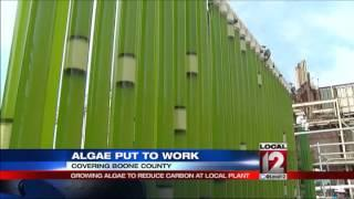 Reducing carbon with algae at local power plan