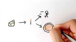 Energy Transfer and Efficiency | GCSE Physics | Doodle Science