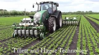 High Speed Electric In-row Weeding