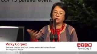 Vicky Corpuz - Climate Change Mitigation