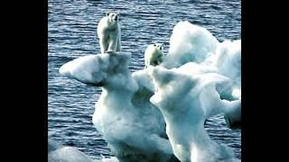 Arctic Ice Melting Environmental Problem By: Neel