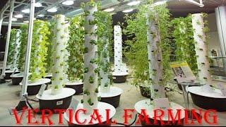 Vertical Farming  | new technology | presentation | business plan | INDIA