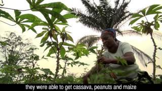 Uniting climate change adaptation and mitigation in the Congo Basin