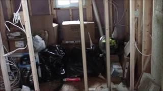 Off Grid Electrical, Plus We Moved the Tiny House!