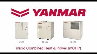 YANMAR CHP Overview