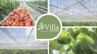 NEW STEAM-GENERATING COMBINED HEAT AND POWER BIOMASS FACILITY FOR VILLA NURSERY