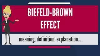 What is BIEFELD-BROWN EFFECT? What does BIEFELD-BROWN EFFECT mean? BIEFELD-BROWN EFFECT meaning