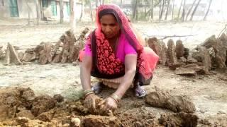 Cow Dung( KANDEY)- Environment friendly BIOFUEL