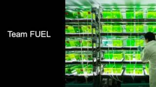 Team FUEL (Algae Biofuels)
