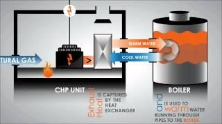 Combined Heat and Power Process