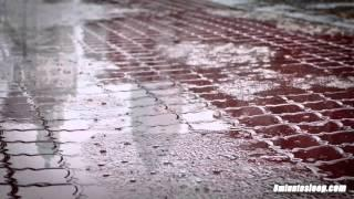 Perfect Rain Sounds For Sleep or Studying   White Noise Nature Rainstorm Audio 10 Hours