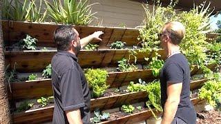 Grow 120 Sq Ft of Garden Up Your House or Wall - Amazing Vertical Raised Bed Garden