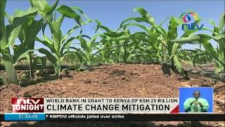 Climate change mitigation: World Bank in grant to Kenya of Ksh 25 billion