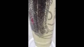 DIY solar hydrogen video X