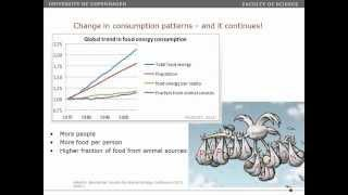Global Agriculture and Climate Change Mitigation