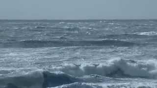 Ocean Energy Systems