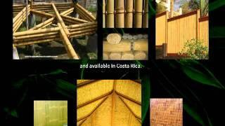 Sustainable Building, Construction Methods, Green Architecture in Central America