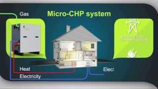 Micro Combined Heat and Power