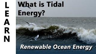 Galway Atlantaquaria, Renewable Ocean Energy learn what is Tidal Energy?