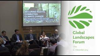 Securing rights as a climate change mitigation strategy