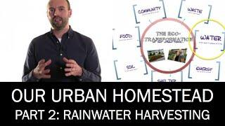 Our Urban Homestead, Part 2: Rainwater Harvesting