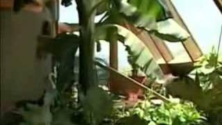Earthship Biotecture on the Weather Channel