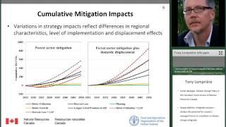 Cost of climate change mitigation in Canada's forest