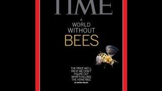 August 2013: Bee Colony Collapse, Arctic Ice Melt, Fukushima etc..etc..