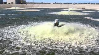 Algae Cultivation For Biofuel Production