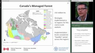 Tony Lempriere: Cost of climate change mitigation in Canada's forest